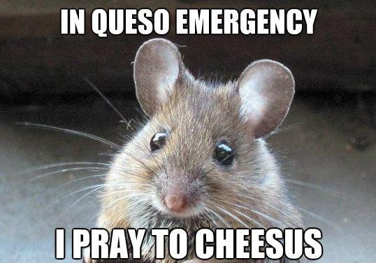 I Pray to Cheesus