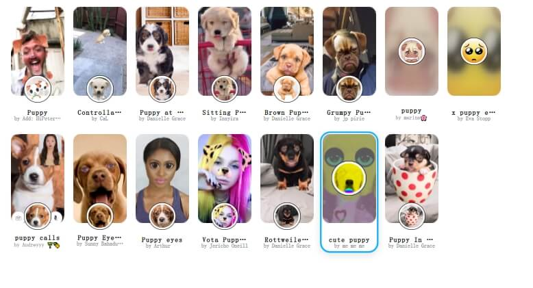best Snap Camera lens and filters - puppy
