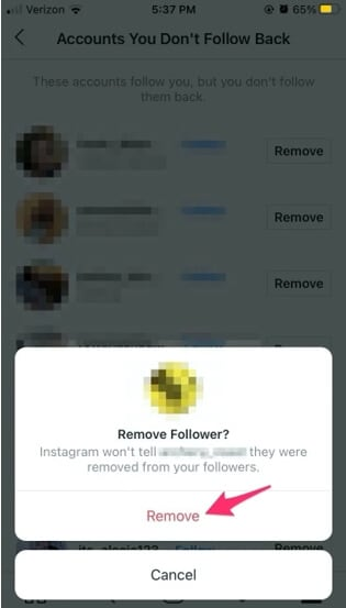 remove followers on Ins