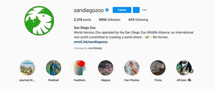 Sandiego Zoo IG highlight