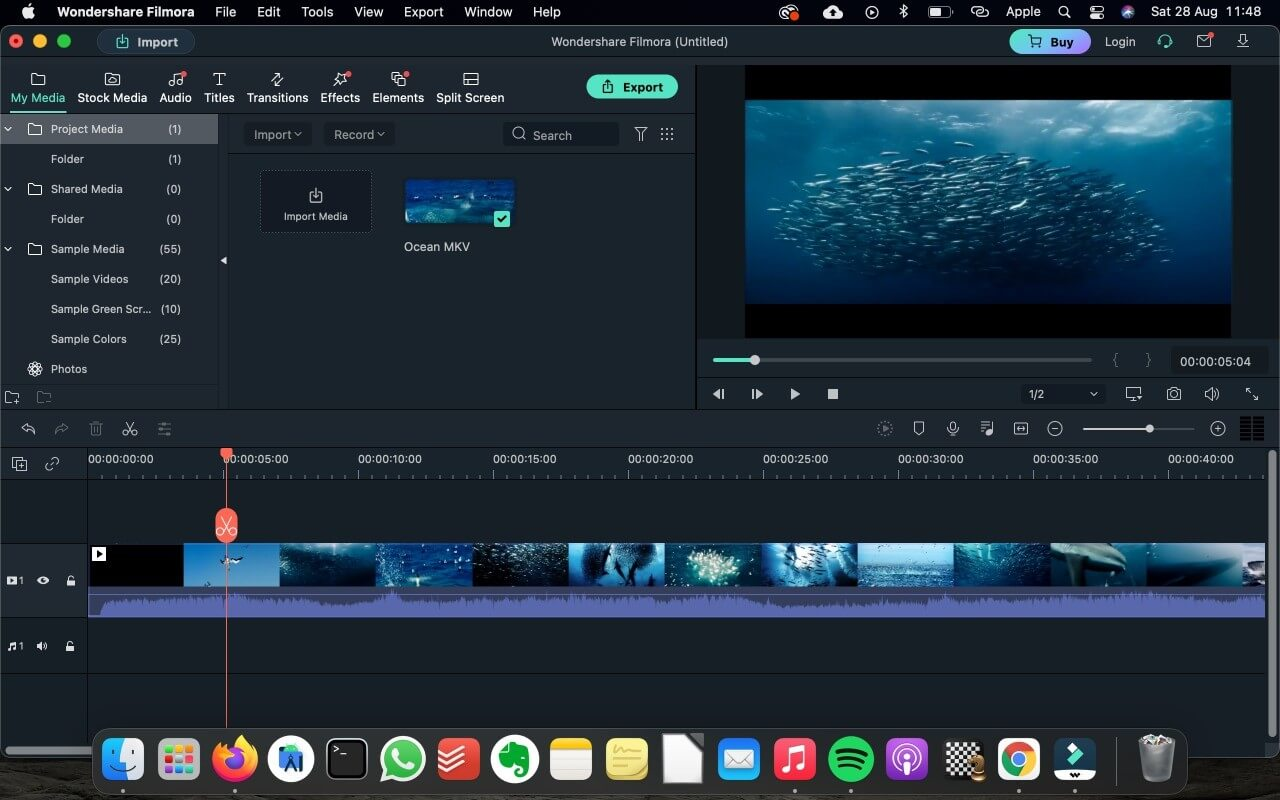 Import MKV video