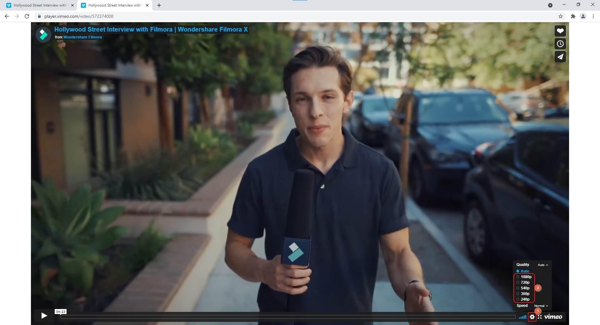 Vimeo Video Player Settings