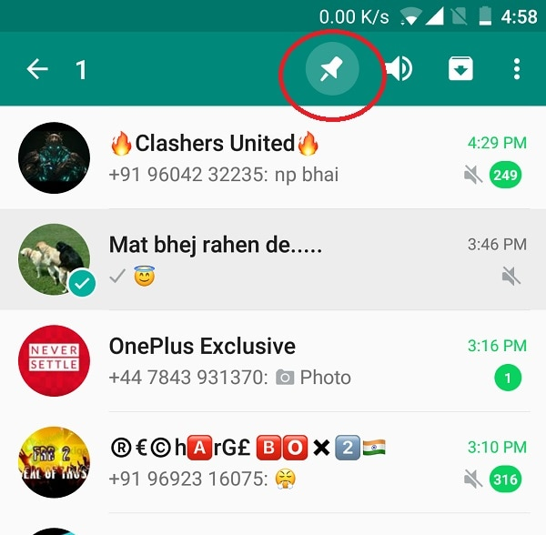 Whatsapp Pin Prioritized Contacts
