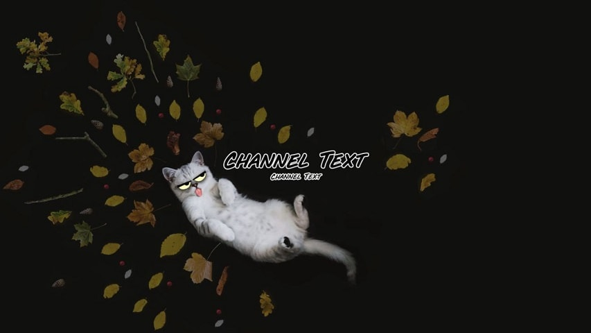 youtube-banner-comedy-cat