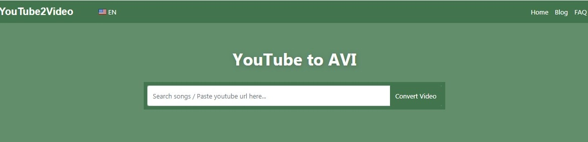 youtube video format vonverter interface