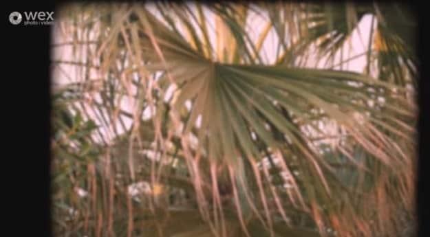Super 8 film grain look