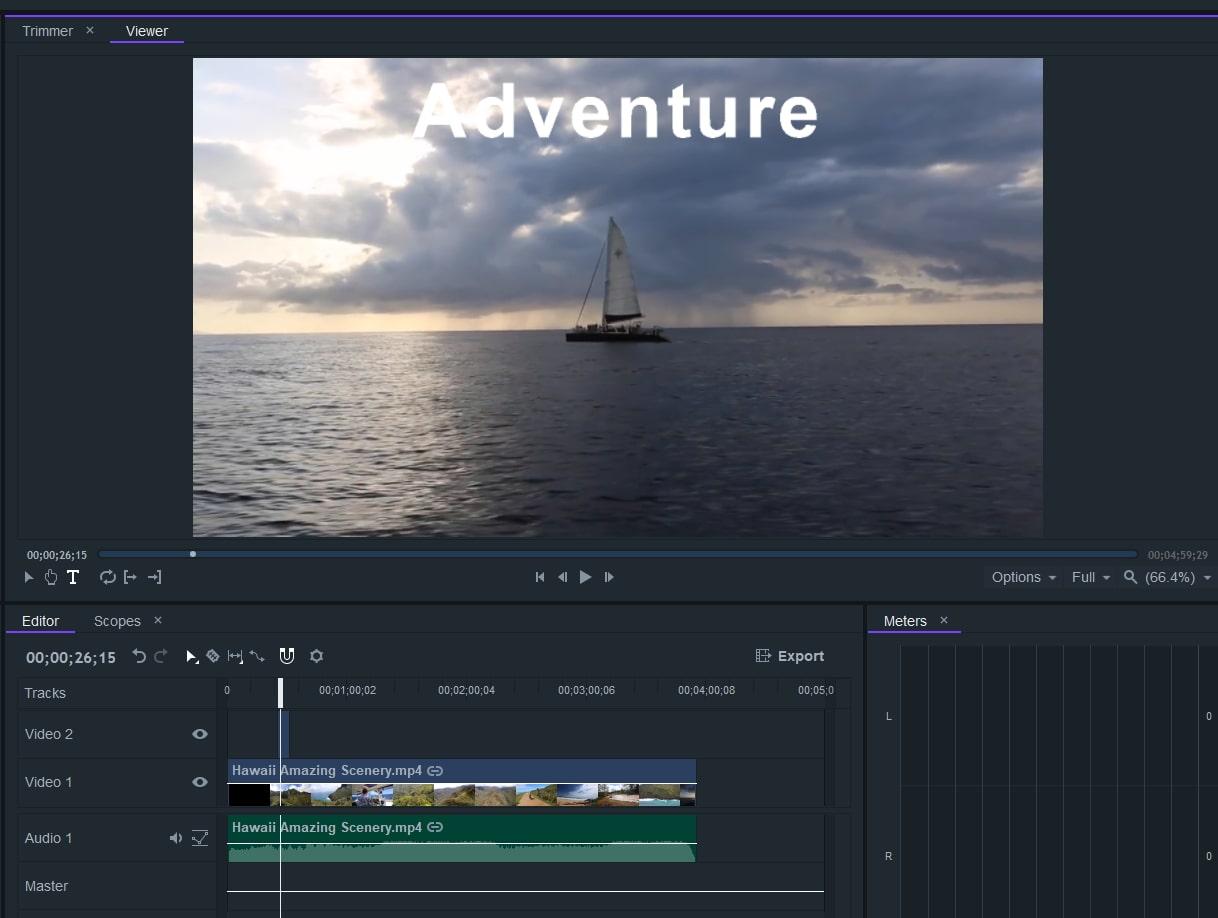 input text in filmorapro