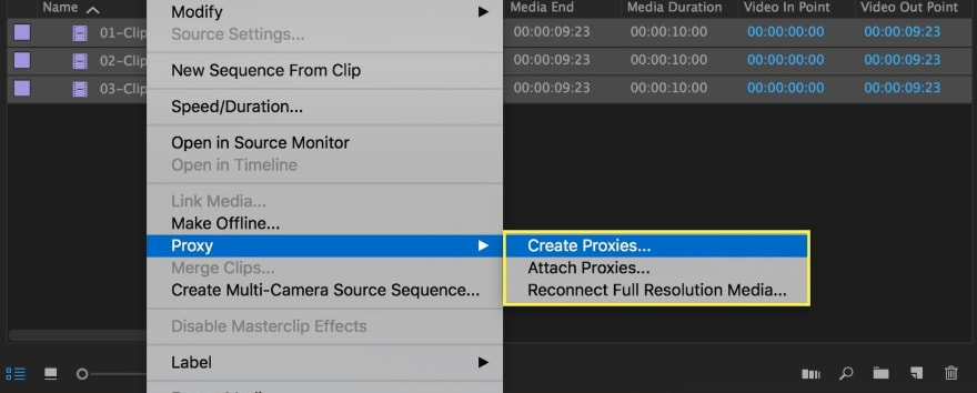 Use proxy videos