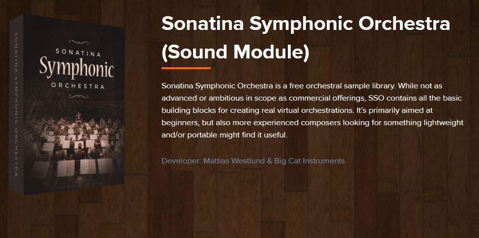 Sonatina Orchestra