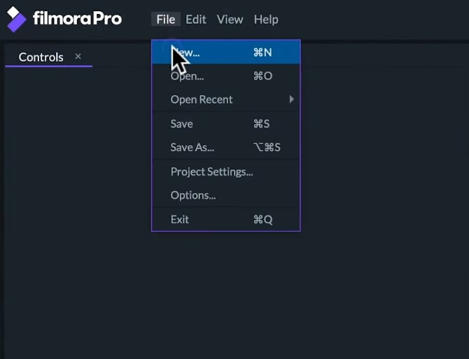 filmorapro project settings