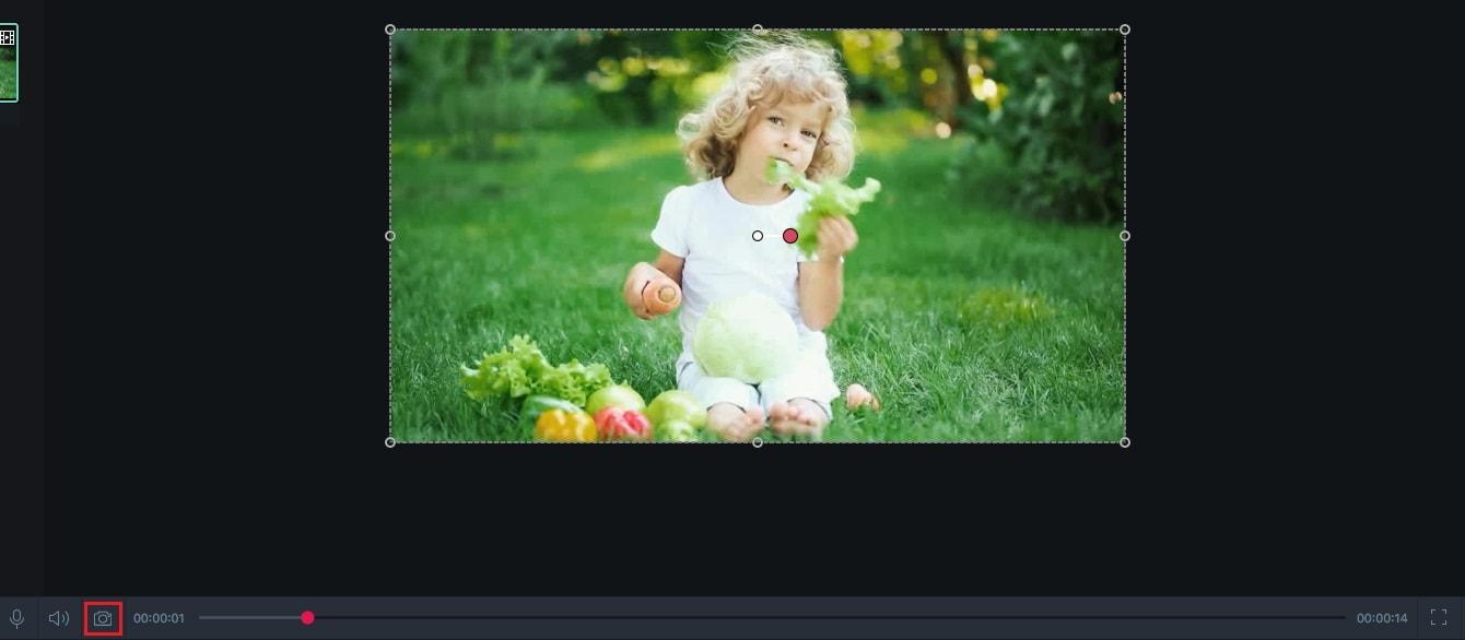 filmora-scrn-mac-screenshot