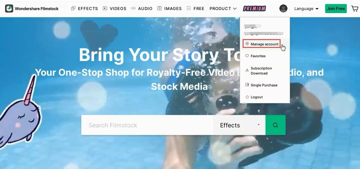 Filmstock account manage