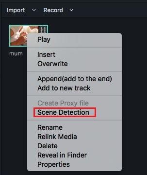 Scene Detection filmora 9