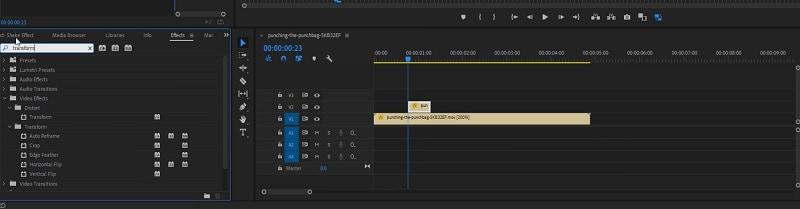 Adobe Premiere Transfer Effect