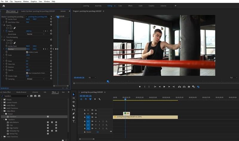 Adobe Premiere Shake Effect