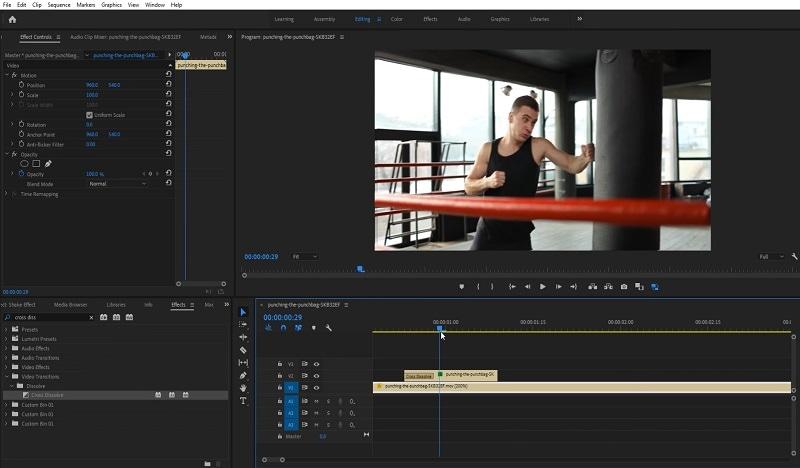 Adobe Premiere Motion Blur