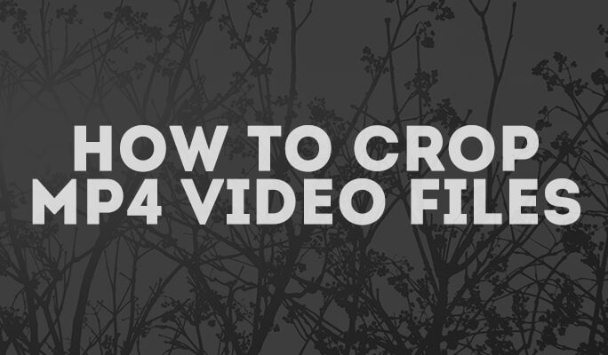 How to Crop MP4 (MPEG, MPG) Video Files