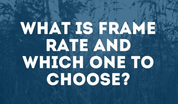 What is Frame Rate and which one to choose?