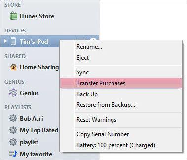 how to get files from ipod to computer