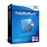 TidyMyMusic