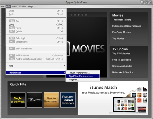 apple quicktime mpeg-2 playback component torrent