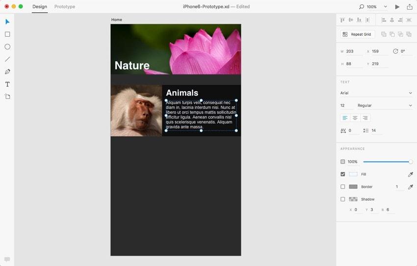 adobe xd for web design