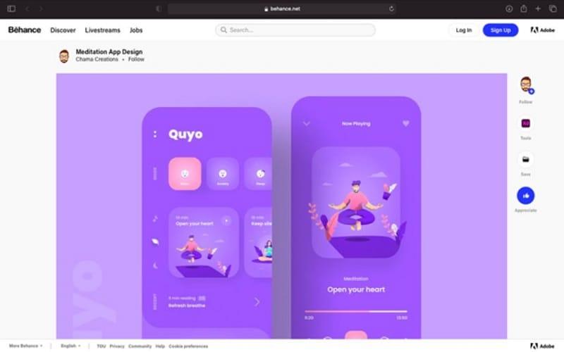 behance mobile app design