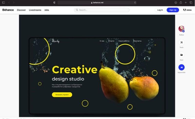 ui design behance