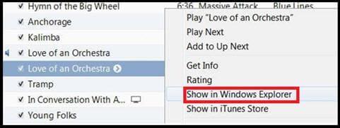 show in windows explorer