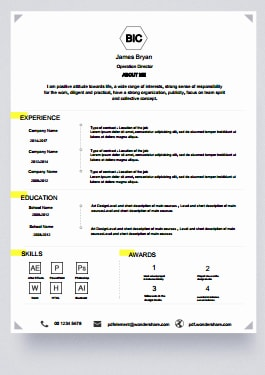 Resume Template - Dynamic Life