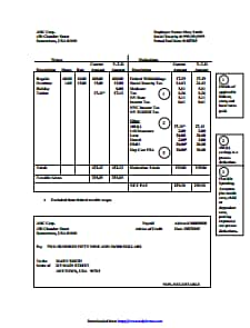 Paystub - Free Download, Edit, Create, Fill and Print PDF Templates