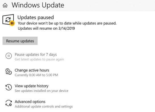 type windows update