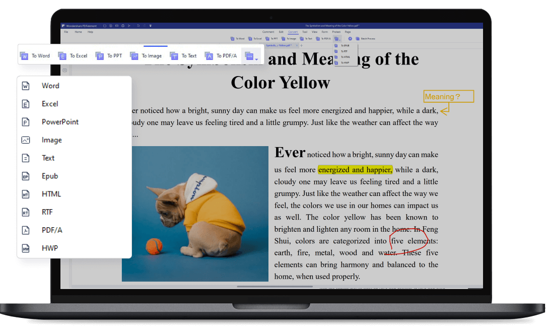Convet pdf to word