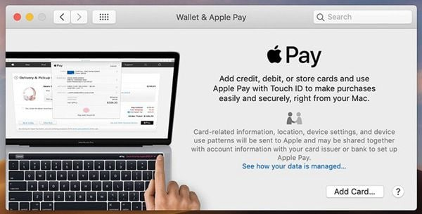 set up and manage apple pay on macos 11