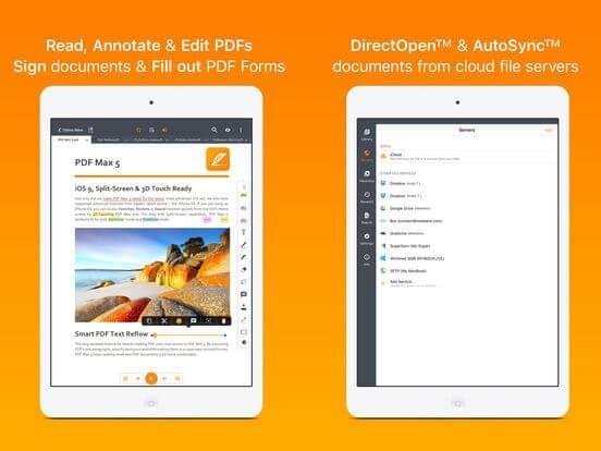 manuale pdf expert ipad