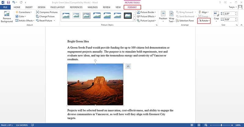 how to mirror a picture in word