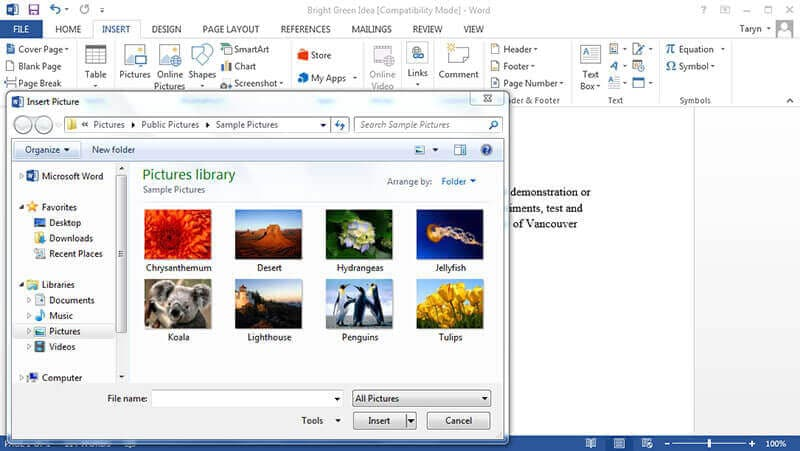 how to make a mirror image in word
