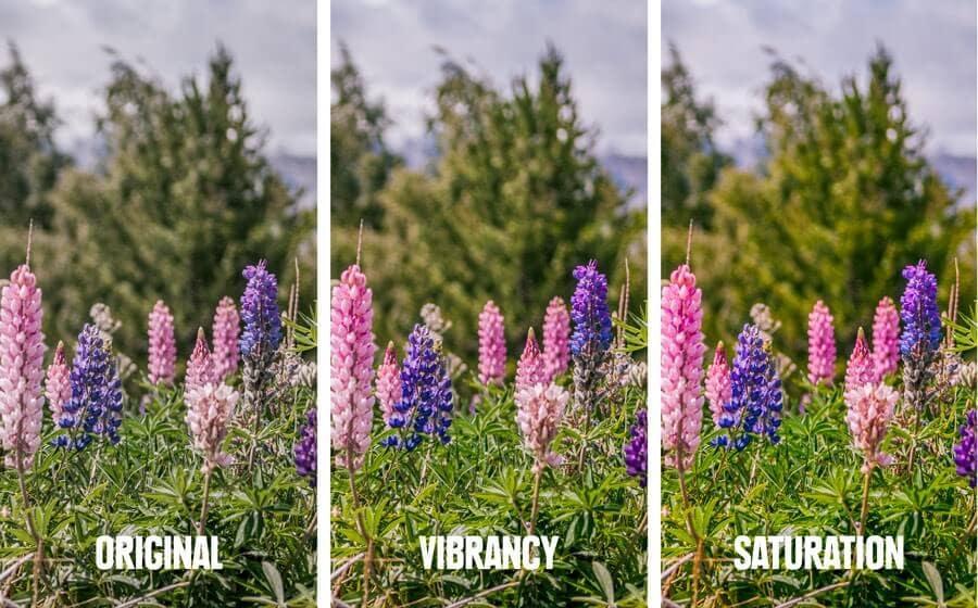 adjust image colors