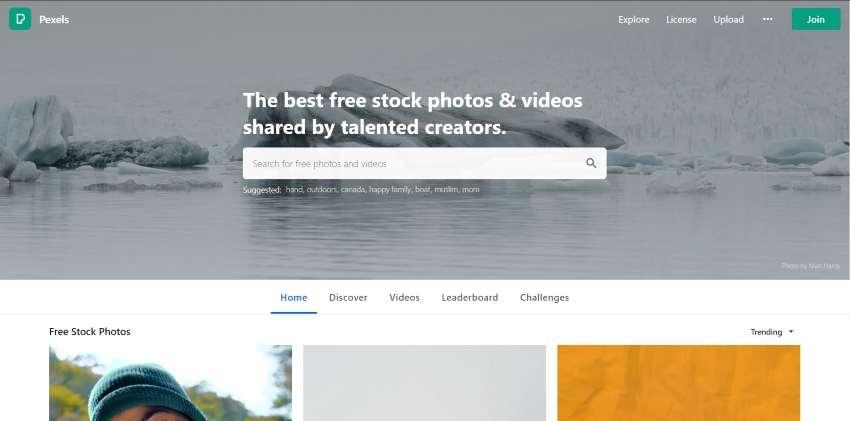 pexels homepage design