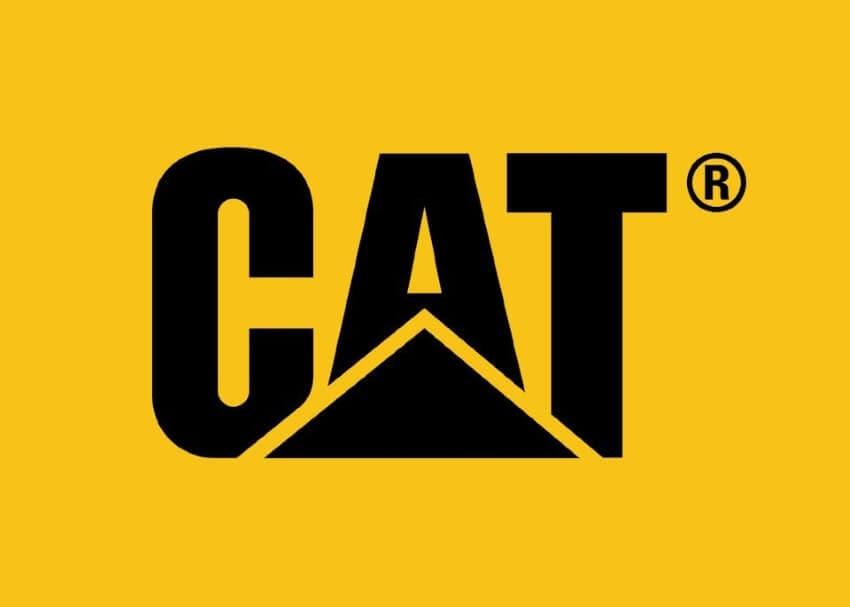 yellow logo color design