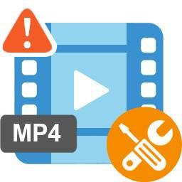 reparar el archivo mp4 dañado