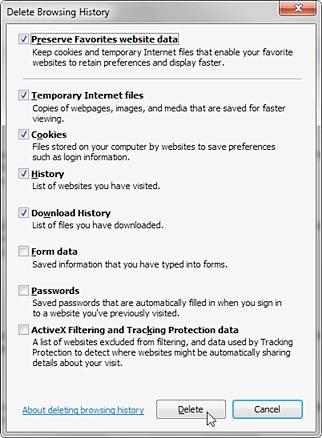 clear Internet Explorer History