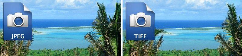 tiff vs jpeg