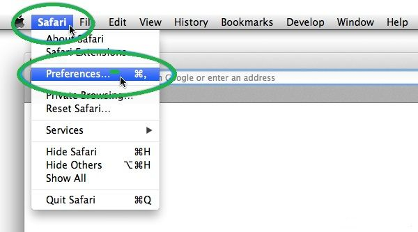 preferences on safari