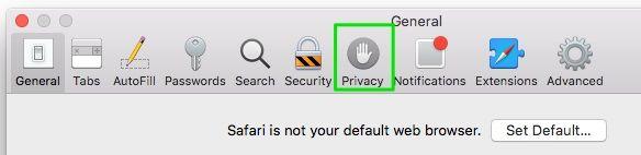 guia de privacidade no safari