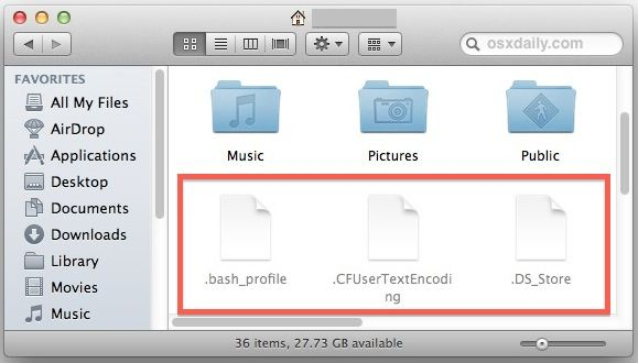 See hidden files on Mac