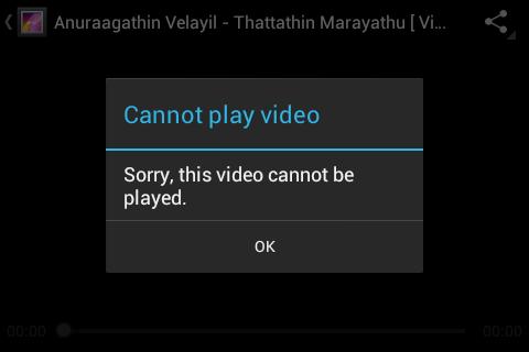 Video playback error