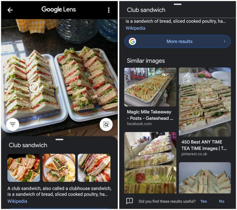 Google Image Search on Android Results