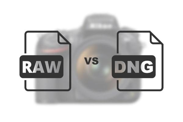 Unterschied zwischen dng und arw