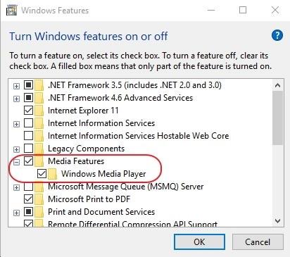 marque a opção do windows media player